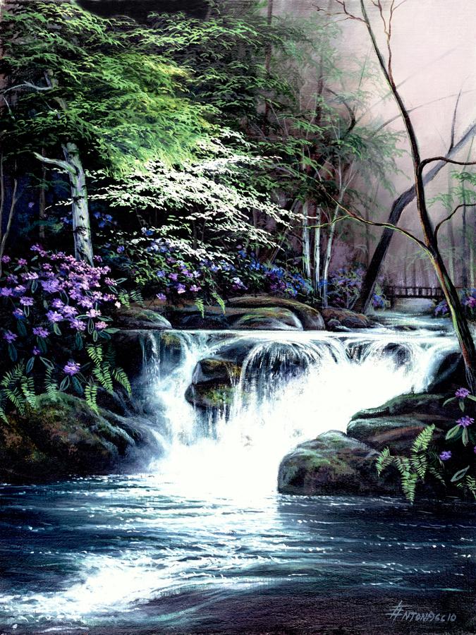 615 Bridge Falls