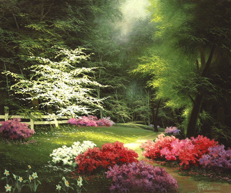 616 Azaleas and Dogwood
