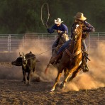 37218 Ropin' On The Ranch III