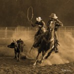 S-35885 Ropin' On The Ranch III